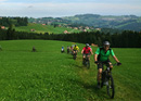 Guided Biketour for Groups Appenzellerland